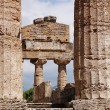 Greek temple Paestum — Stock Photo #6810788