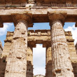 Greek temple Paestum — Stock Photo #6810953