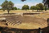 Greek amphitheater Paestum — ストック写真