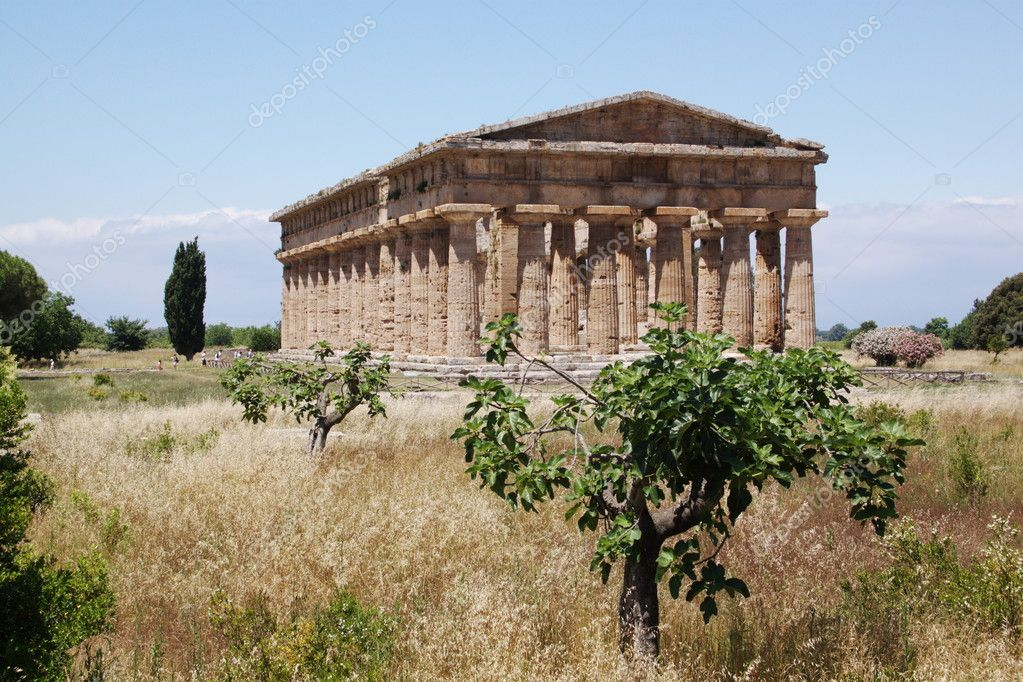 Ancient greek temple in Paestum, Italy  Stock Photo #6810627