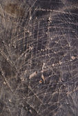 Scratched leather — Stock Photo