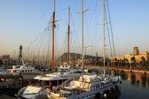 Luxury yachts at sunset — Stock Photo