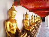 Een rij van zittende boeddha standbeeld in wat pho — Stockfoto