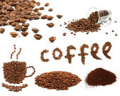 Variety of coffee beans — Stock Photo