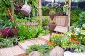 Beautiful garden — Foto de Stock
