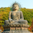 Korea buddha — Stock Photo
