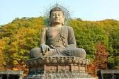 Korea buddha — Stock Photo