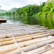 Bamboo raft — Stock Photo #7506581