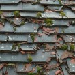 An Old Roof with Broken Tiles — Stock Photo #7904023