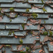 An Old Roof with Broken Tiles — Stock Photo