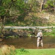 Fly Fishing, River Dove — Stock Photo