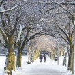 Edinburgh in the snow — Stock Photo