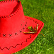 REd hat — Stock Photo