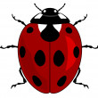 Ladybird — Stock Vector