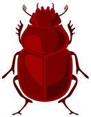 Vector illustration of beetle scarab — Stock Vector