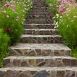 Royalty-Free Stock Photo: Stairs with flowers