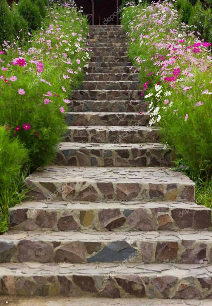 Rock stairs surrounded by flowers — Stock Photo #7008922