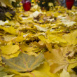 Yellow autumn leafs on cemetery — Stock Photo