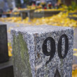 Stock Photo: Marble column on cemetery