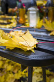 Autumn leafs on banch — Stock Photo
