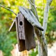 Birdhouse — Stockfoto #7373776