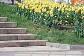 Staircase and flowerbed in a park at the spring — Foto de Stock