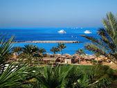 Egyptian shore — Stock Photo