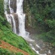 Stock Photo: Waterfalls in tropical forest