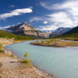 Beautiful canadian landscape, Jasper National Park, Alberta, Canada — Stock Photo