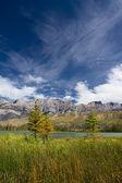 Beautiful Canadian Landscape, Jasper National Park, Alberta, Canada — Stock Photo