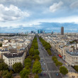 The landscape of Paris city, France — Stock Photo #6842028