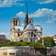 Notre Dame de Paris carhedral — Stock Photo #7492393