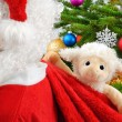 Sweet stuffed animal in Santa's bag — Stock Photo
