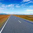 Stock Photo: A photo of road in New Zealand