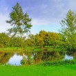 Public park with lake — Stock Photo