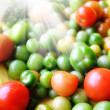 A soft photo of a lot of tomatoes — Stock Photo