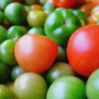 A soft photo of a lot of tomatoes - Stock Photo