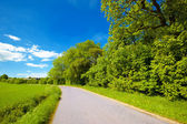Road in the countryside — Stock Photo