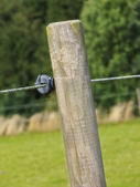 Old fence post in the countryside — Stock Photo
