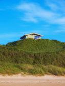 ユトランド半島の海岸線の写真 — ストック写真