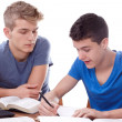Stock Photo: Studying together