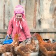 Chicken farm — Stock Photo #7685715