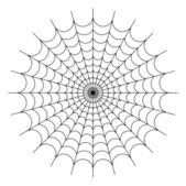 Round spider web — Stock Photo