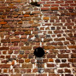 A brick wall - Stock Photo