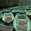 A lot of green boat — Stock Photo
