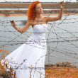 Royalty-Free Stock Photo: Bride with barbed wire