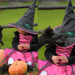Stock Photo: Little witch