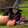Little witch — Stock Photo #7074641