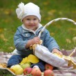 Little girl sits with a basket of apples — Stock Photo #7319910