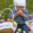 Little girl sits with a basket of apples — Stock Photo